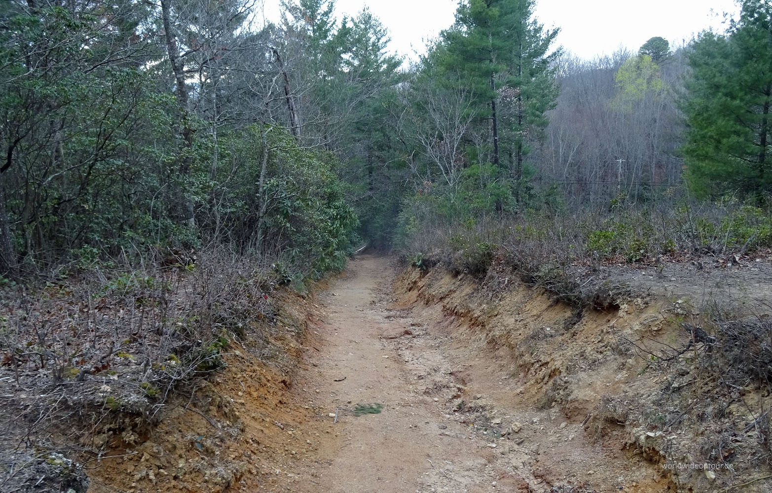 Bear Trail whe