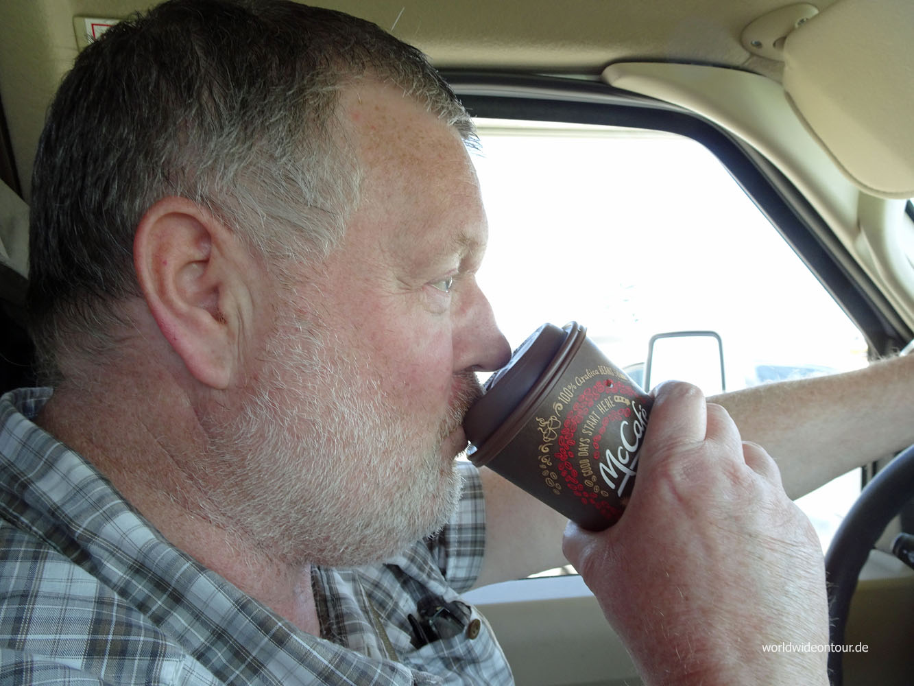 Wolf mit Kaffee am Steuer sab