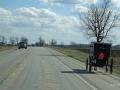 Verkehr mit Kutsche2 sab_bearbeitet-1of