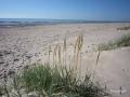 Hochsaison: Herrlicher Strand bei Gaili etwa 15 km südlich von Liepaja