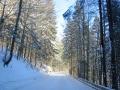 L 14 im Schnee4 whe_bearbeitet-1