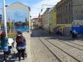 Blick Neustadt wheof.jpg