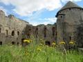Burg mit Blumen Sabof