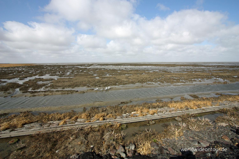 Watt und Salzwiesen whe