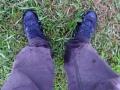 Feucht im Gras wheof