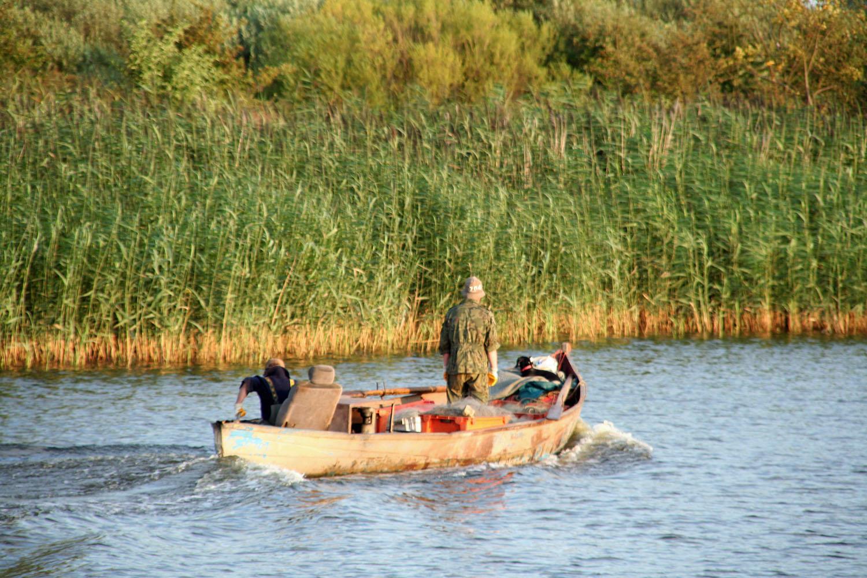 Fischen Autosessel sab_bearbeitet-1