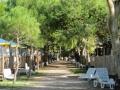 Campingplatz Weg sab