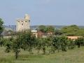 Turm und Gelaende sabof