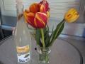 Birkensaft und Tulpen sab