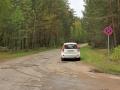 Eidermediacar im Wald sabof
