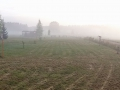Pano Morgennebel whe 200515_bearbeitet-1