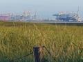 Blick auf Stromkaje whe