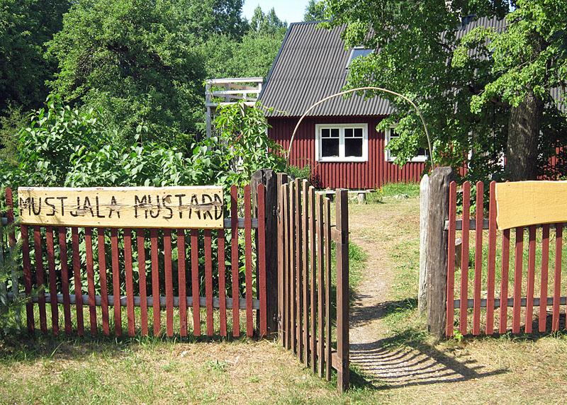Estnischer Senf von Deutschen produziert