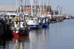 Kutter im Hafen F Nordseeheilbad Cuxhaven