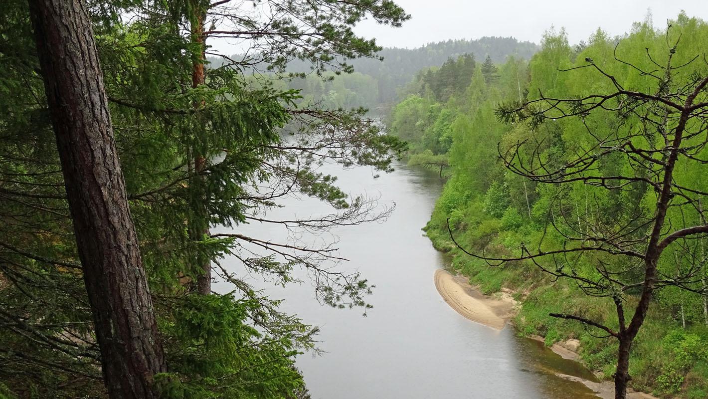 Die Gauja in der Nähe von Pieskalni