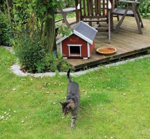 Kater Pauli hat einen eigenen Wohnsitz im Garten