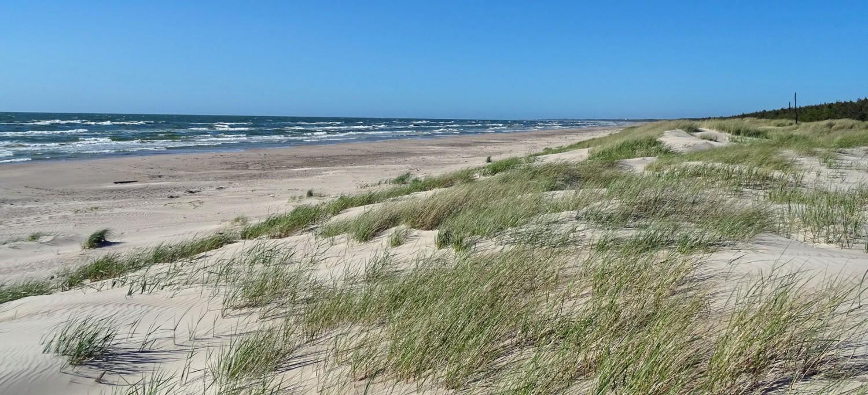 Viel Platz am schönen Strand. Fotos. Henze