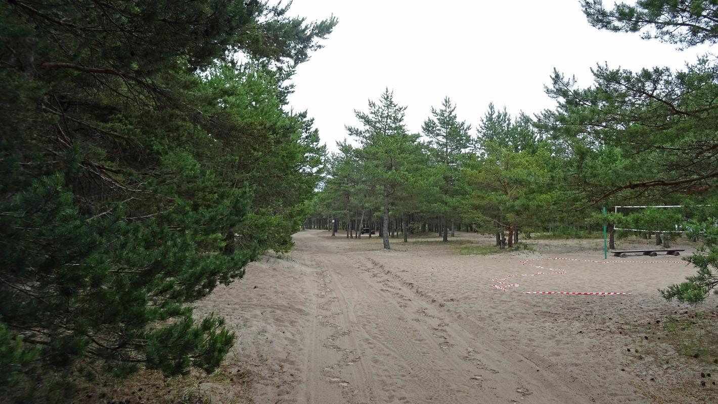 Zugewachsene Wege auf dem Campingplatz Mändjala.