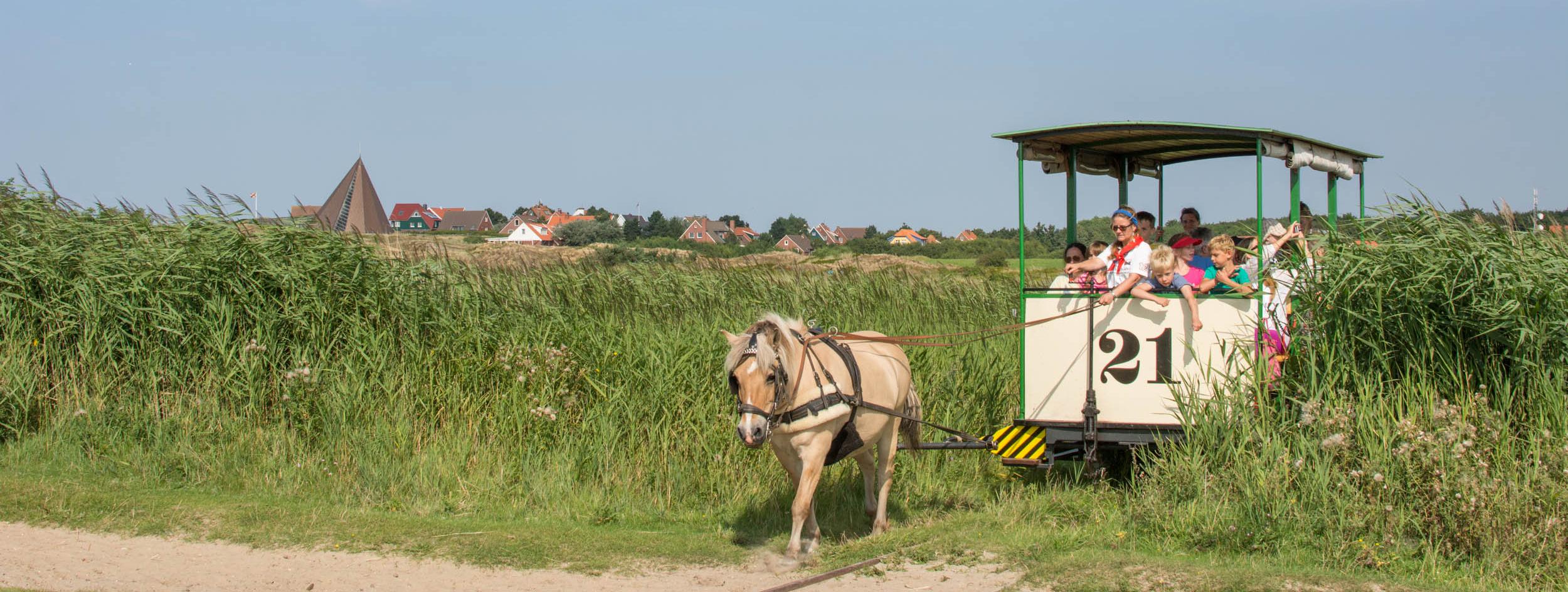 """""""Tamme"""" zieht die Bahn. Fotos: Spiekeroog Tourismus"""