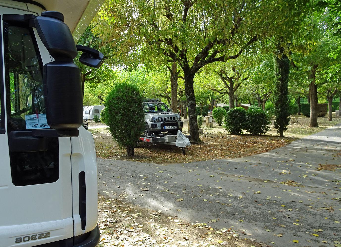 bergziege-auf-trailer-whe
