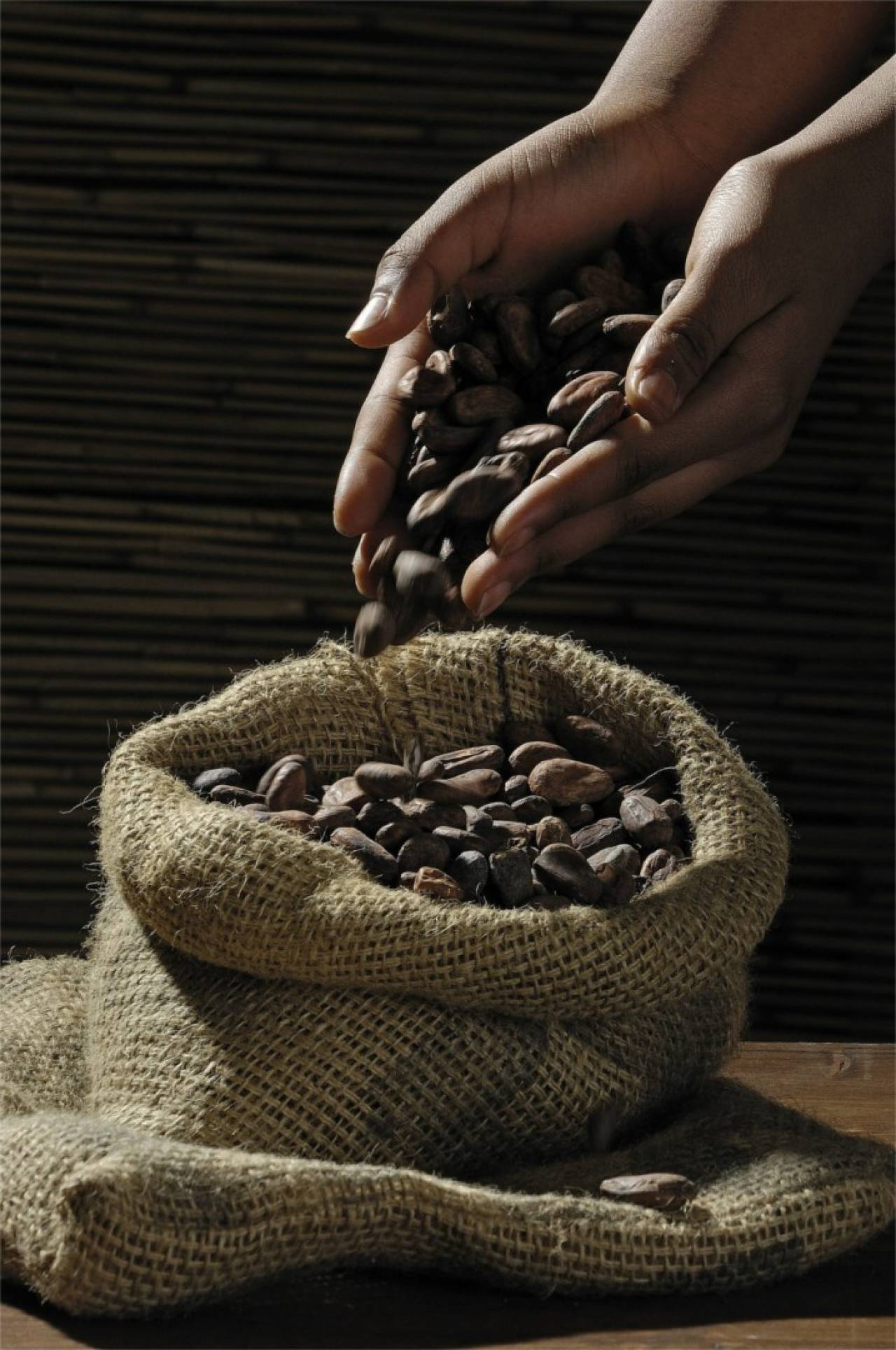 HL_Insights_Cocoa_beans