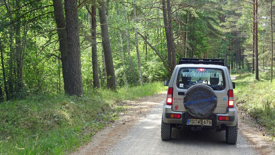 Jimny im Wald sab