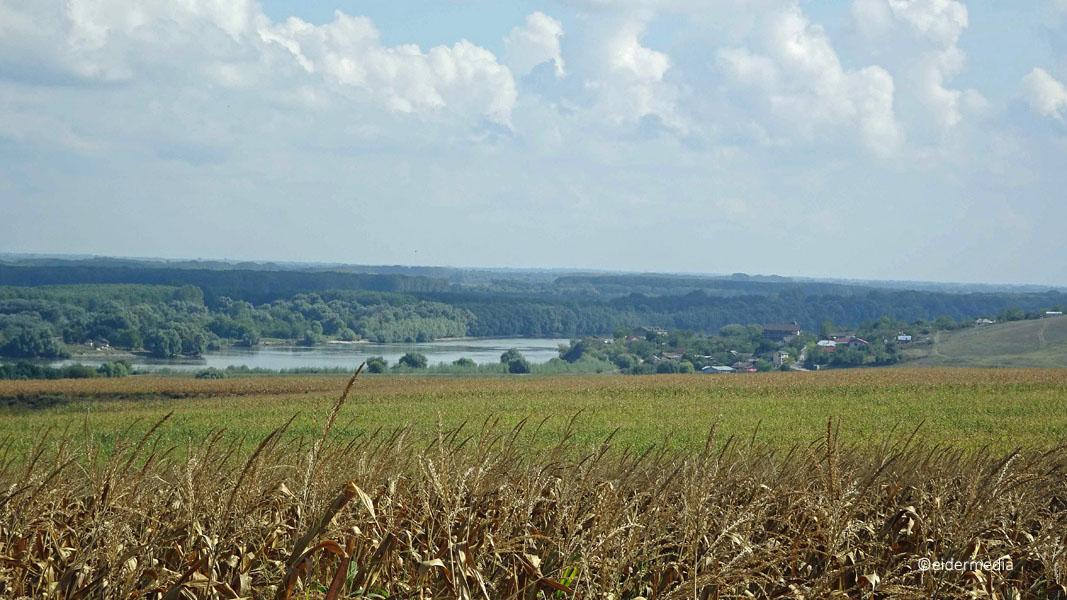 Blick ins Donaudelta sab