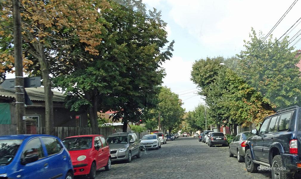 Straße in Tulcea sab